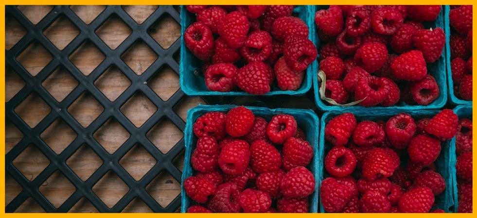 frutas-fresca